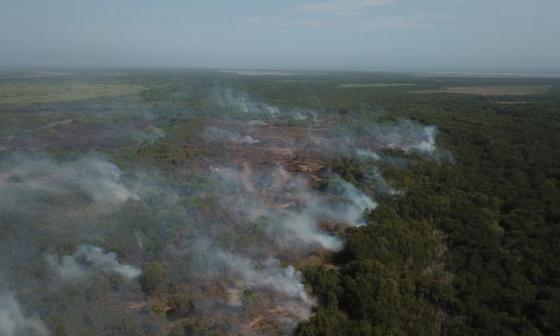 Bomberos controlan el 50% del incendio en Isla Salamanca