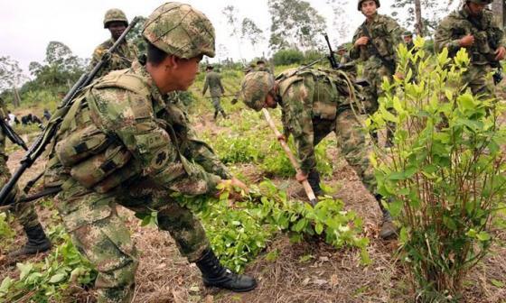 Cuatro militares mueren en ataque armado cuando erradicaban coca