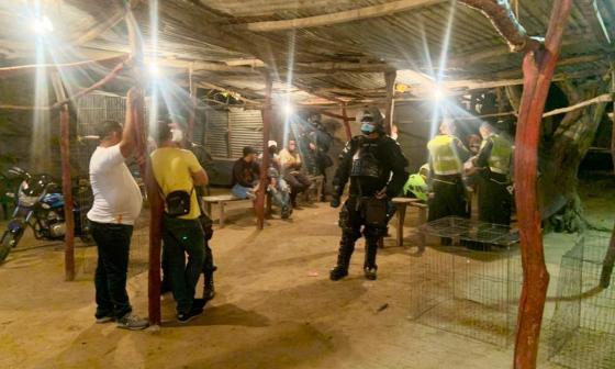 Intervienen gallera en Riohacha donde había unas cien personas