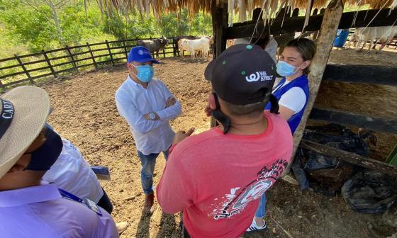 Informes de la ARN indican que en Sucre hay 83 personas vinculadas a 51 proyectos productivos individuales y otras 110 a 7 proyectos colectivos.