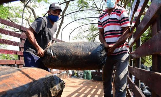 476 productores de Campo y Candelaria reciben apoyo de la Gobernación