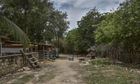 Puerto Colombia: denuncian destrucción de zona de mangle