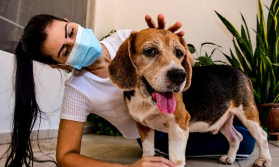 Rachelle, la animalista que ahora cuida Chester