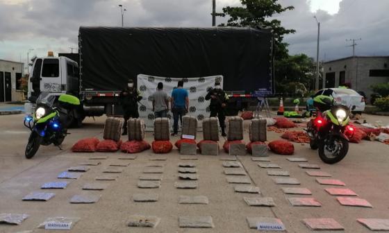 Cae cargamento de marihuana escondido en bultos de zanahoria en Córdoba