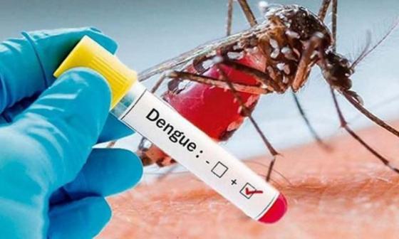 En medio de la pandemia se dispara el dengue en Sucre