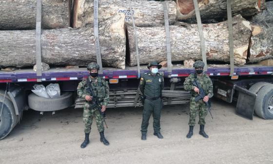 Decomisan cargamento ilegal de madera en Córdoba