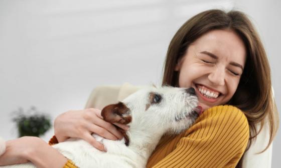 Conozca cuáles son los beneficios psicológicos de tener una mascota