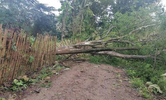 Fuertes lluvias afectaron el servicio de energía en Tierralta