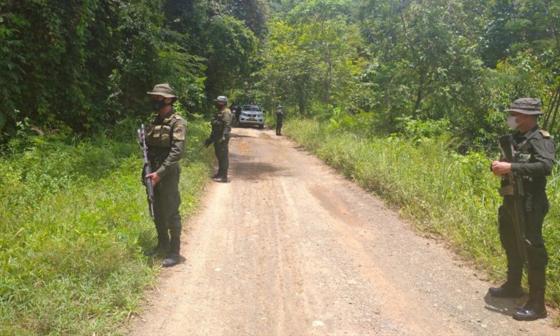 Reportan hostigamiento contra erradicadores de coca en el sur de Córdoba