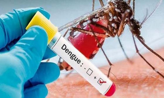 Distrito hace llamado para prevenir dengue en temporada de lluvia
