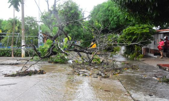 Lluvias causan estragos en el suroccidente de Barranquilla