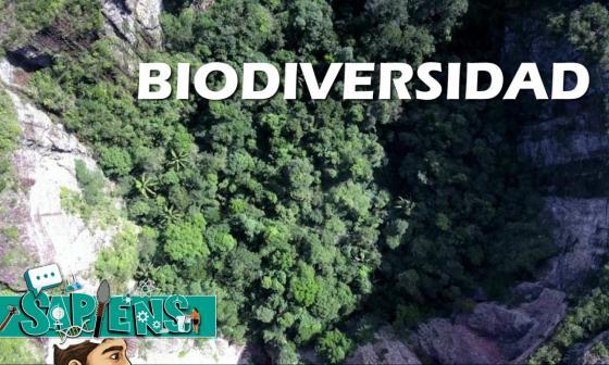 Sapiens | Colombia es el segundo país más biodiverso del mundo