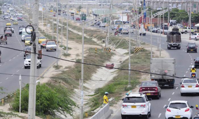 Barranquilla necesita más árboles