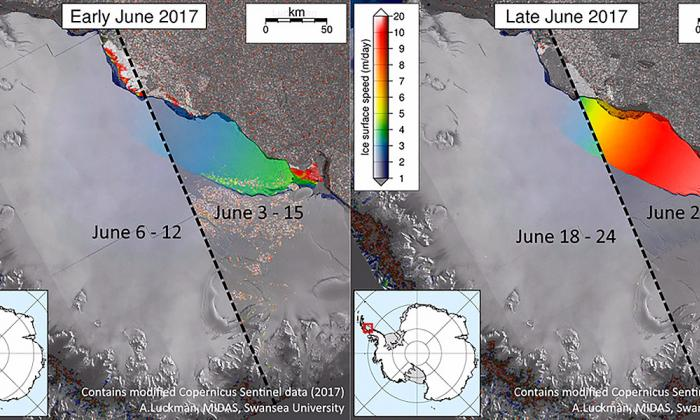 Desprendimiento del iceberg es una señal de la crisis climática: Greenpace