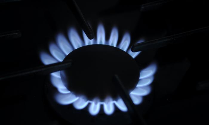 Gases del Caribe registra favorabilidad del 91%