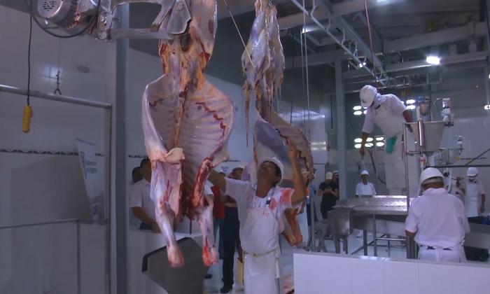 Chile restablece importaciones de carne bovina desde Colombia