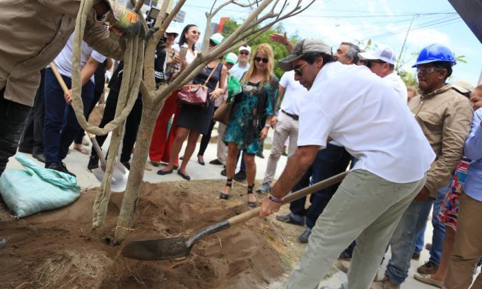 'Alistonia', el nuevo aroma de Villa Carolina