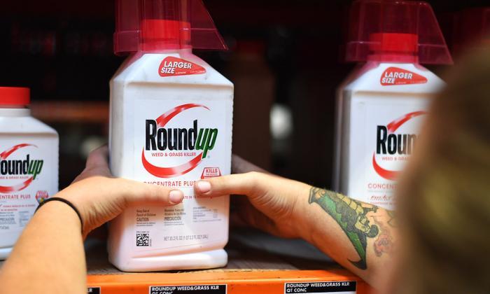 Round Up, nombre comercial del glifosato en Estados Unidos.