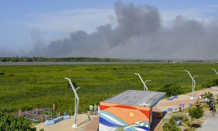 Una columna de humo sale del Vía Parque Isla Salamanca.