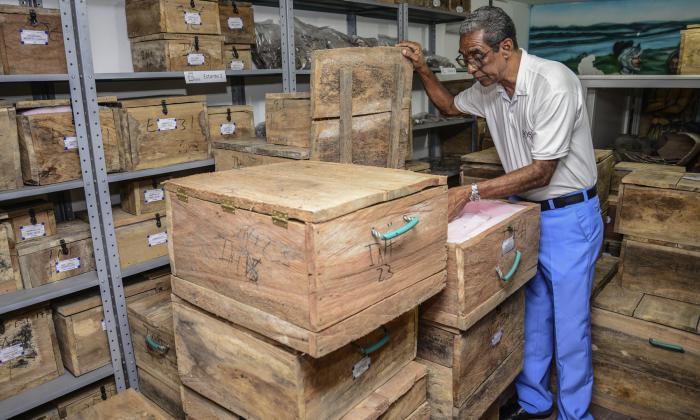 Del siglo XIV al 2019: los hallazgos Malibú que llegaron a Malambo