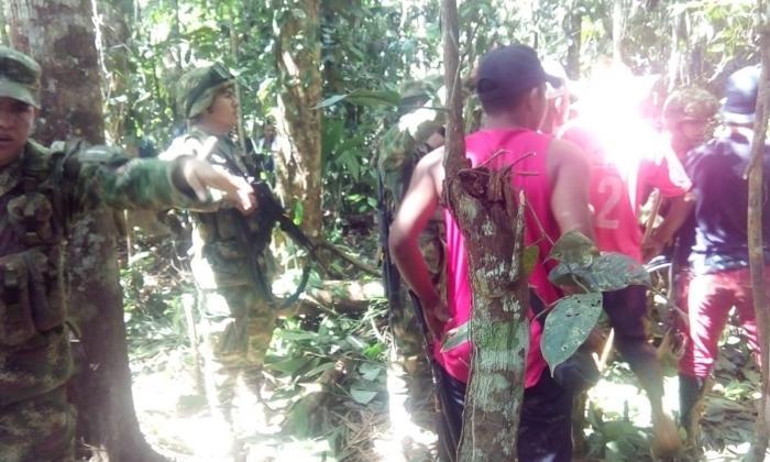 En video   Choques entre campesinos y Ejército en el sur de Córdoba por erradicación de hoja de coca