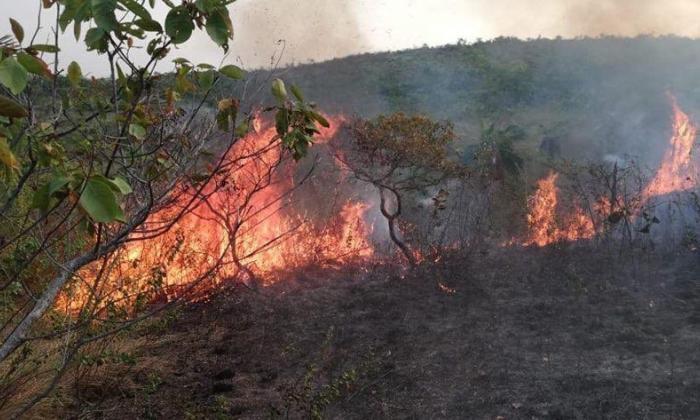 Comunidad pide protección de La Macarena luego de incendios