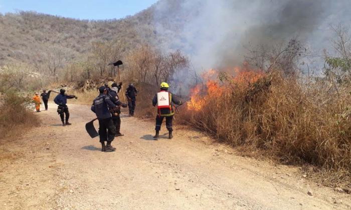 En La Guajira se han reportado incendios forestales en los municipios de Urumita, Fonseca y Riohacha.