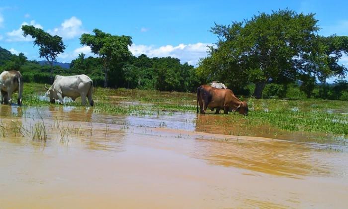 En video   Emergencia por inundaciones en Montecristo, Bolívar