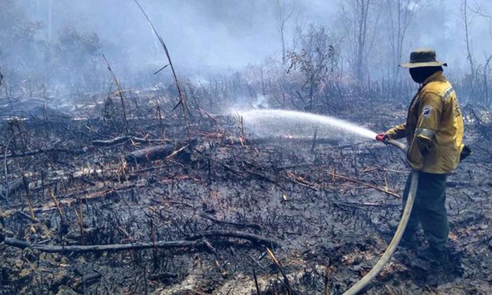 Bomberos luchan por apagar incendio en Isla Salamanca