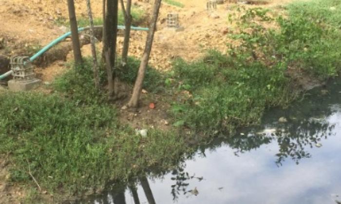 Cardique reinicia obras en Caño de Bazurto y Parque Espíritu del Manglar