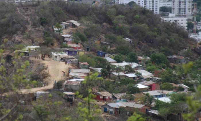 Panorama del Cerro de La Popa en Cartagena afectado por invasiones y talas de árboles.