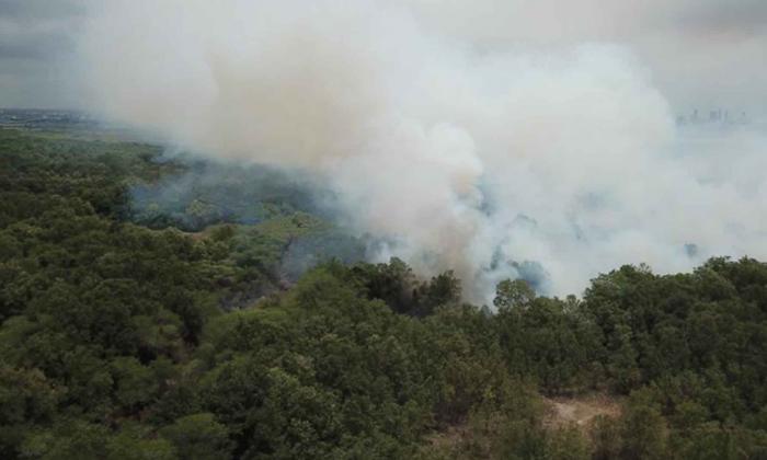 Foto aérea del incendio forestal que se registra en un sector del Vía Parque Isla Salamanca.