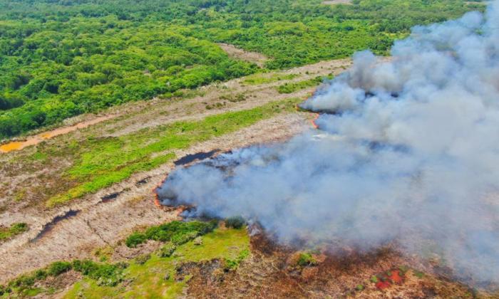 Estas son las propuestas que se discuten para frenar quemas en Isla Salamanca