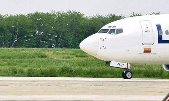 Aerolíneas, con fecha límite para entregar itinerarios internacionales