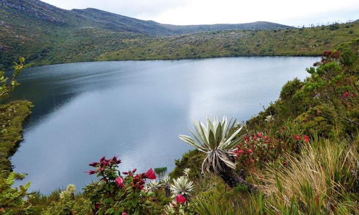 Ocho parques naturales del país comenzarán su reapertura