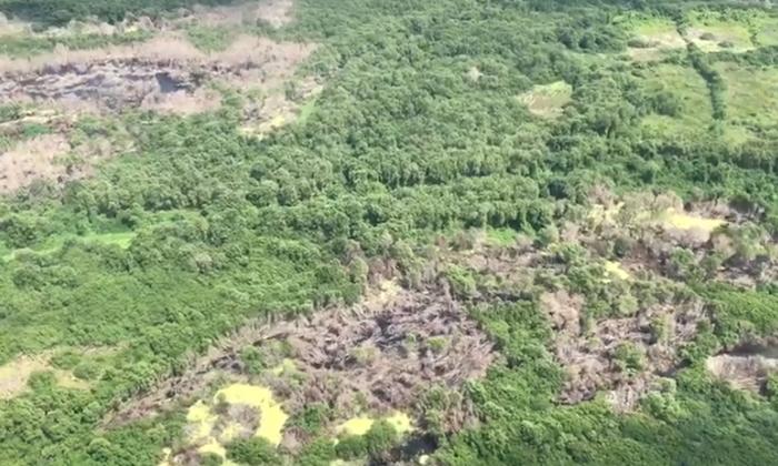 FAC sobrevuela Parque Isla Salamanca para vigilar que no realicen quemas