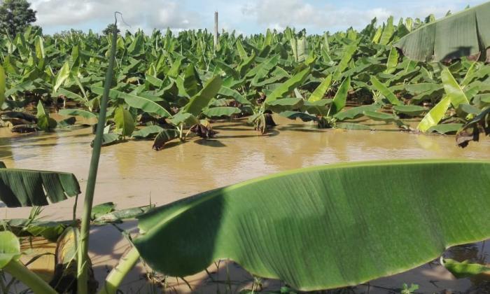 Se reportan nuevas inundaciones en municipios de Córdoba