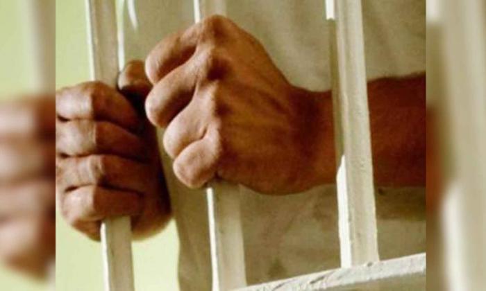 Casi 5 años de cárcel para hombre que envió rata muerta a su exesposa en EEUU