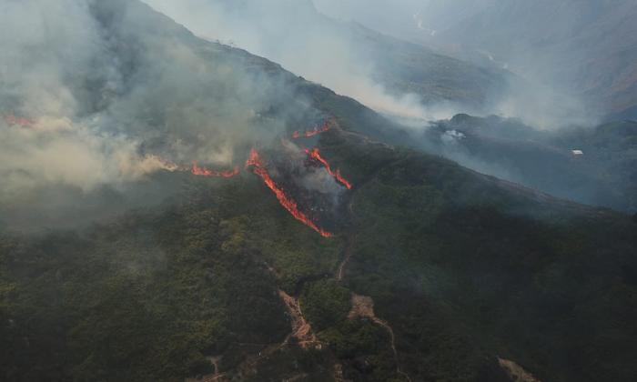 Incendio forestal arrasó con más de 60 hectáreas cerca al Cañón de Chicamocha