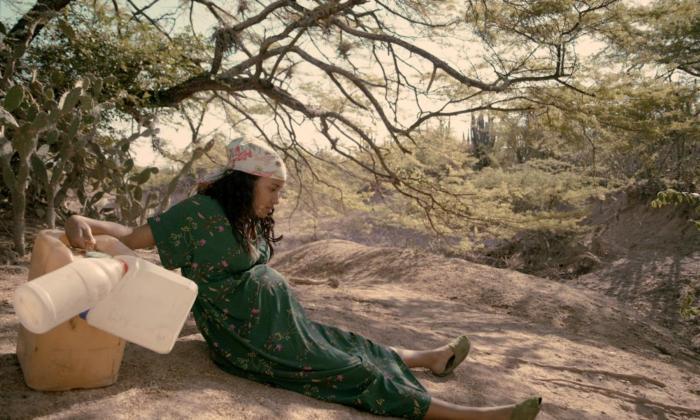 Filme costeño 'La frontera' seduce en festival asiático