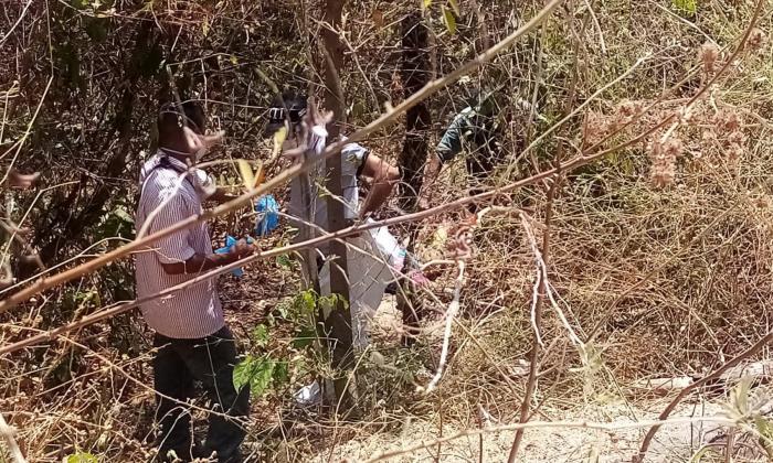 Hallan cadáver descompuesto en el área rural de Ciénaga, Magdalena