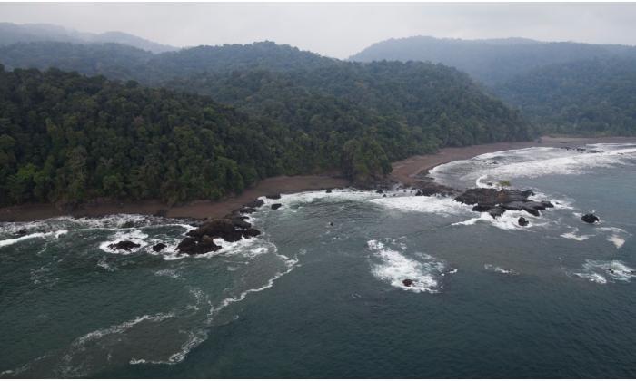 San Antero abanderado en la conservación de océanos a nivel mundial