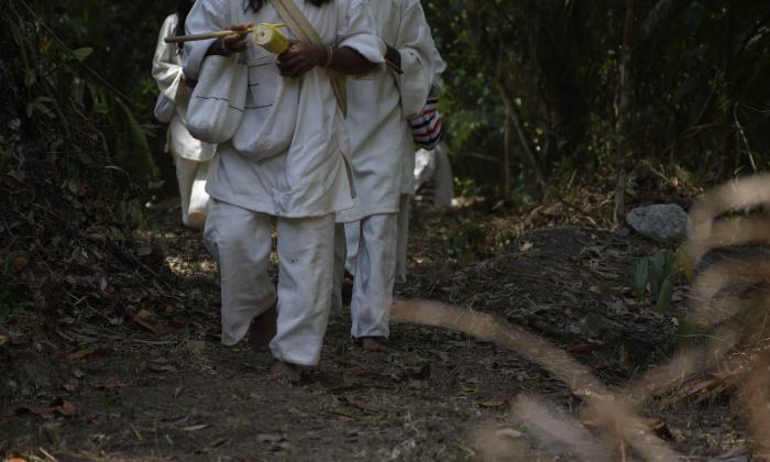 La defensa de lo ancestral: entre la violencia y el despojo