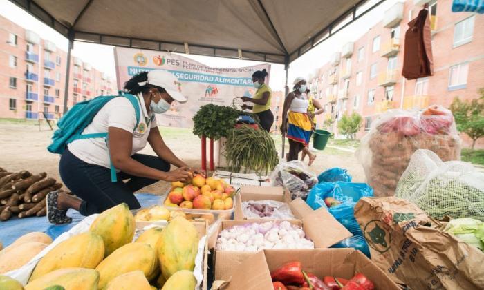 Mercado Móvil Campesino visita Villa Estrella en Cartagena
