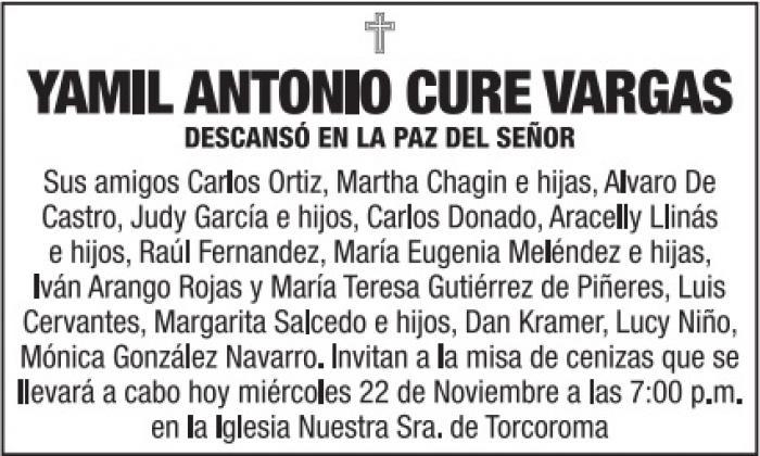 Yamil Antonio Cure Vargas