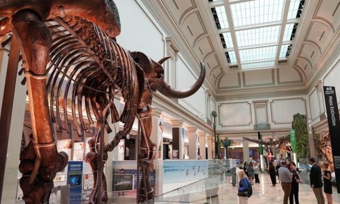 Museos de Washington, símbolo de la reapertura en EE. UU. tras la pandemia