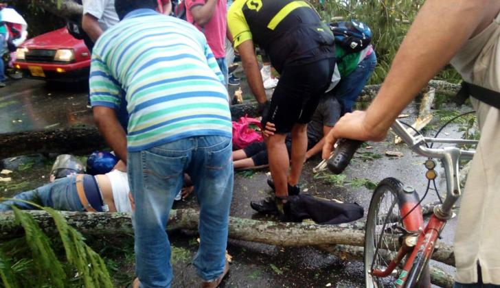 La mitad de un robusto árbol de campano se desplomó y causó la muerte al parrillero de una motocicleta y dejó herido al conductor en Montería. Este es el segundo caso que se registra en tres años.