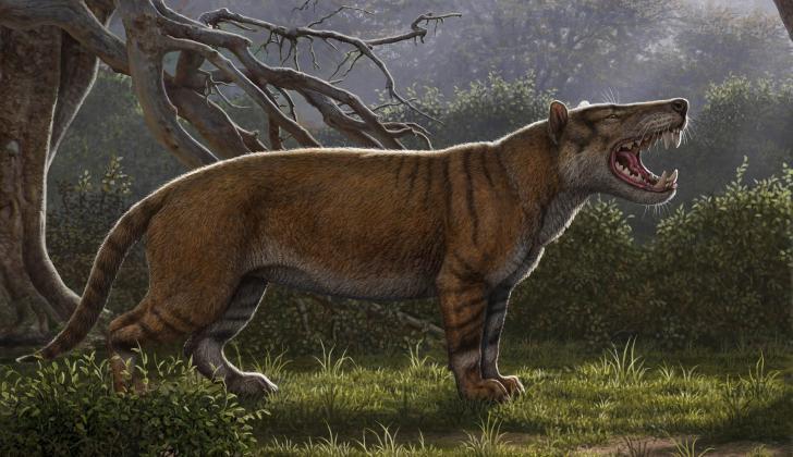 Ilustración de la apariencia del Simbakubwa kutokaafrika (Gran león de África).