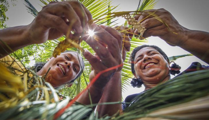 Las hermanas Angulo, oriundas de Usiacurí, posan en el momento en que inician un tejido con palma de iraca.