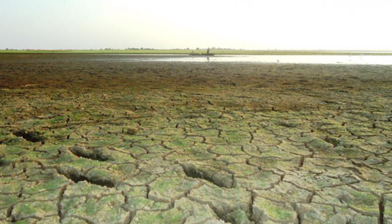 Por sequía, los pescadores pueden caminar por el río San Jorge